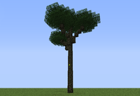 Canopy Tree ig.png