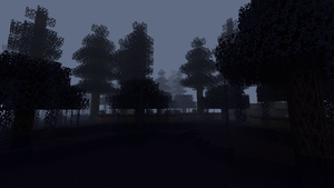 creepy forest at night