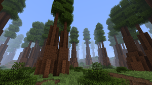 Redwood Forest (Biomes O' Plenty) - Feed The Beast Wiki