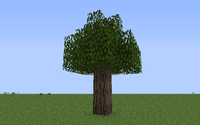 Twilight Oak Small ig.png