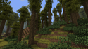 Deciduous Forest.png